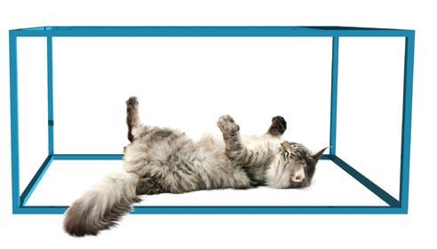 De kat van Schrödinger - quantummechanica